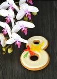 Fundo do cinza 8 de março do pão-de-espécie e da orquídea Imagem de Stock