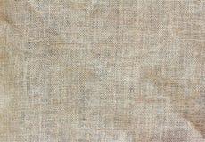 Fundo do cinza, a textura da serapilheira imagens de stock