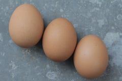 Fundo do clássico de três ovos Fotografia de Stock Royalty Free