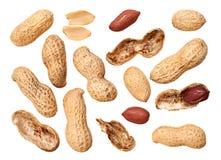 Fundo do close up do amendoim Foto de Stock Royalty Free