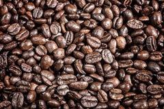 Fundo do contexto roasted do alimento dos grãos de café Imagens de Stock