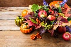 Fundo do cumprimento da ação de graças com maçãs maduras, flores azuis Fotografia de Stock Royalty Free