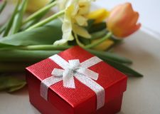Fundo do dia das mulheres com as flores bonitas da tulipa Imagem de Stock