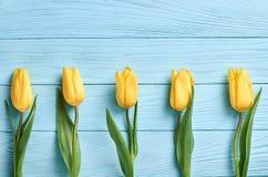 Fundo do dia de mães Amarelo das tulipas na madeira azul Foto de Stock