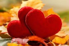 Fundo do dia de Valentim Coração dois nas folhas Conceito do amor fotografia de stock royalty free