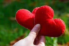 Fundo do dia de Valentim Coração dois nas folhas Conceito do amor fotos de stock