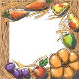 Fundo do esboço da colheita Fotografia de Stock Royalty Free