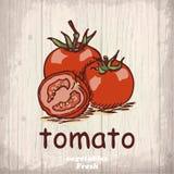 Fundo do esboço dos legumes frescos Ilustração do desenho da mão do vintage de um tomate ilustração royalty free