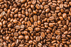 Fundo do feijão de café imagens de stock royalty free