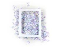 Fundo do feriado com as estrelas de prata dos confetes Foto de Stock Royalty Free
