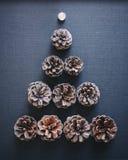 Fundo do feriado dos elementos da decoração da árvore de Natal do cone do pinho Foto de Stock