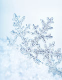 Fundo do floco de neve foto de stock royalty free