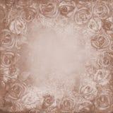 Fundo do Grunge com rosas imagens de stock royalty free