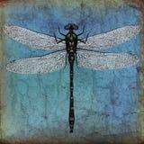 Fundo do grunge da libélula ilustração do vetor