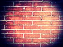 fundo do grunge da textura da parede de tijolo Imagens de Stock Royalty Free