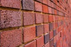 Fundo do grunge da textura da parede de tijolo vermelho Textura fotografia de stock royalty free