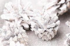 Fundo do Grunge de cones do pinho Objeto do pinho Cones Fotografia de Stock Royalty Free