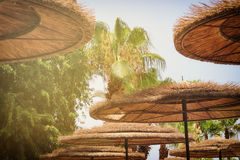 Fundo do guarda-chuva de praia de bambu Conceito tropical do feriado Fotografia de Stock Royalty Free