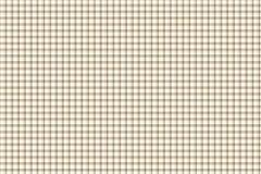 Fundo do guingão da manta Imagens de Stock