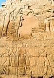 Fundo do Hieroglyph foto de stock