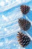 Fundo do inverno Foto de Stock Royalty Free