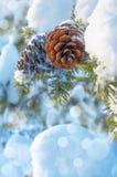 Fundo do inverno Fotografia de Stock