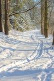 Fundo do inverno com estrada Fotos de Stock Royalty Free