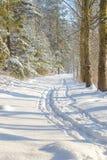 Fundo do inverno com estrada Fotografia de Stock Royalty Free