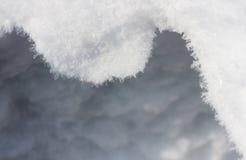 Fundo do inverno com neve Imagens de Stock