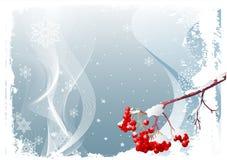 Fundo do inverno da filial de árvore da cinza ilustração stock