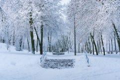 Fundo do inverno do conto de fadas com parque bloqueado pela neve Fotografia de Stock