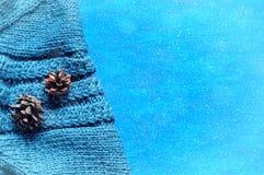 Fundo do inverno O cone de abeto sobre o cinza fez malha a camiseta com queda de neve do inverno Fotos de Stock