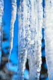 Fundo do inverno ou da mola com sincelos transparentes brilhantes na luz solar Fotografia de Stock Royalty Free