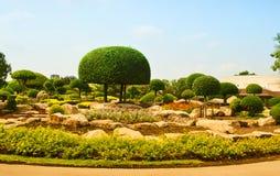 Fundo do jardim da paisagem da planta tropical Fotos de Stock
