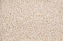 Fundo do macro das sementes de sésamo Fotografia de Stock Royalty Free