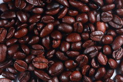 Fundo do macro dos feijões de café Fotografia de Stock Royalty Free