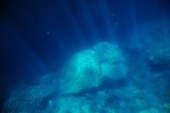 Fundo do mar subaquático com luz solar Imagens de Stock