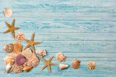 Fundo do mar do verão - shell, estrela em um fundo azul de madeira foto de stock