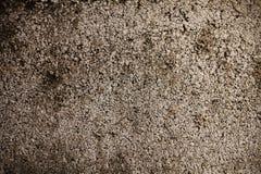 Fundo do muro de cimento Foto de Stock Royalty Free