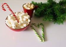 Fundo do Natal, cartão com uma xícara de café ou um chocolate com marshmallows, bastões de doces, uma placa vermelha e ramos de á ilustração stock