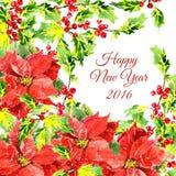 Fundo do Natal com as flores vermelhas frescas e Imagens de Stock Royalty Free