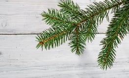 Fundo do Natal com a decoração do abeto do ramo na madeira branca foto de stock royalty free