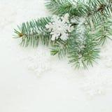 Fundo do Natal com floco de neve branco Imagem de Stock Royalty Free