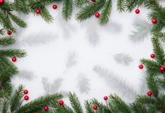 Fundo do Natal com quadro decorativo de agulhas do pinho imagem de stock