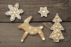 Fundo do Natal ou do inverno com rena Imagens de Stock Royalty Free