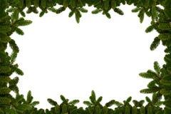 Fundo do Natal - ramos do abeto Foto de Stock Royalty Free