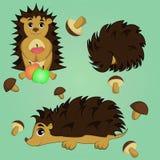 Fundo do ouriço com maçãs e cogumelos ilustração stock