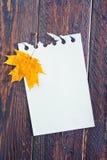 Fundo do outono Foto de Stock