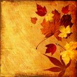 Fundo do outono ilustração stock