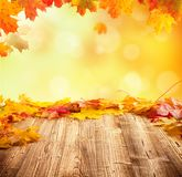 Fundo do outono com as pranchas de madeira vazias Fotografia de Stock